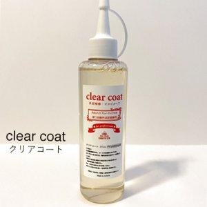 画像1: 【クリアコート】ツヤピカのホームカラー、プロ用ツヤだしコート剤 (1)
