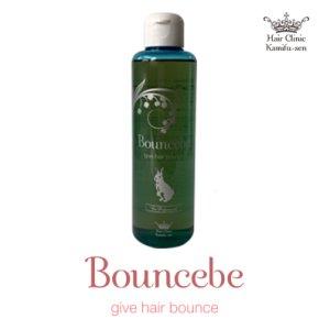 画像1: バウンスビー、毛髪強化剤、傷んだ髪を強く (1)